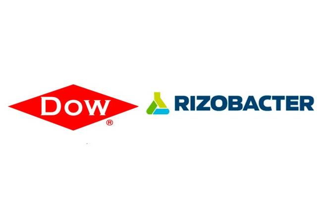 Cómo nace un adyuvante premium: la asociación de Dow con Rizobacter